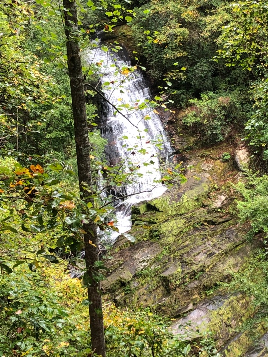 38. Laurel Fork Falls