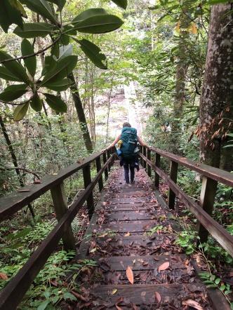 56. Steps to Horsepasture River